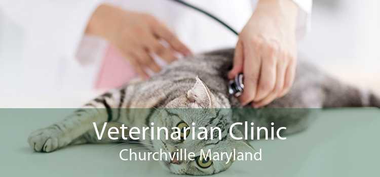 Veterinarian Clinic Churchville Maryland