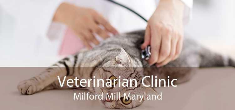 Veterinarian Clinic Milford Mill Maryland