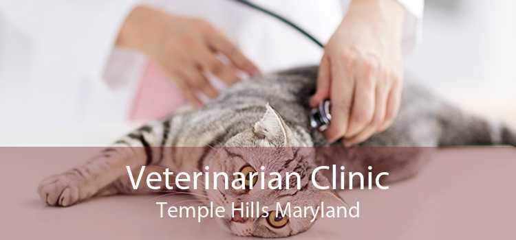 Veterinarian Clinic Temple Hills Maryland